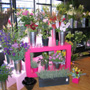 Inside our flower shop